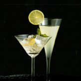 Arthouse Cocktails Printed Canvas Art
