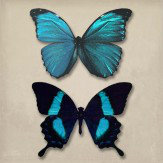 Arthouse Teal Butterflies set of 3 canvases Art