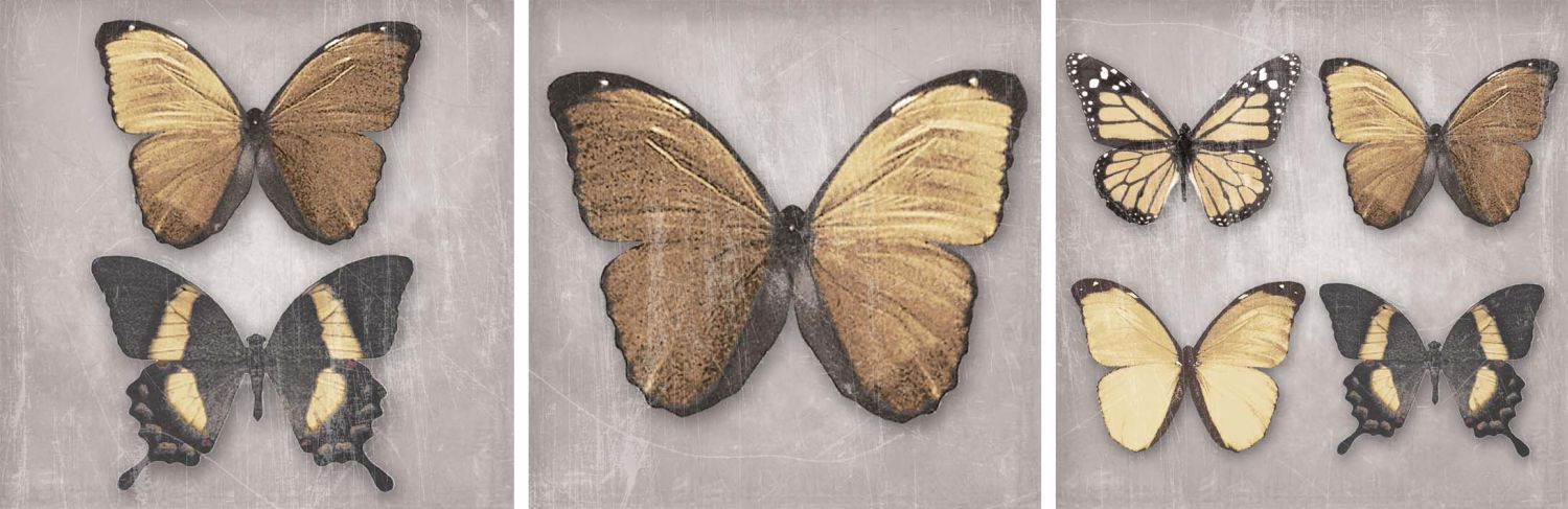 Arthouse Black and Gold Butterflies set of 3 canvases Art - Product code: 002574