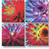 Arthouse Hyper Real Dahlias set of 4 Printed Canvases Multi-coloured Art - Product code: 002547