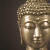 Arthouse Outdoor Art - Black and Gold Buddha