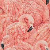 Albany Flamingos Pink Wallpaper - Product code: 823820