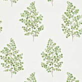 Sanderson Angel Ferns Green / Off White Wallpaper