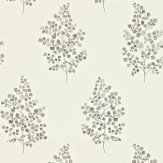Sanderson Angel Ferns Grey / Off White Wallpaper