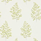 Sanderson Angel Ferns Olive / Off White Wallpaper - Product code: 211998