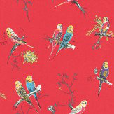 Blendworth Chirpy Red Red / Blue / Pink Wallpaper