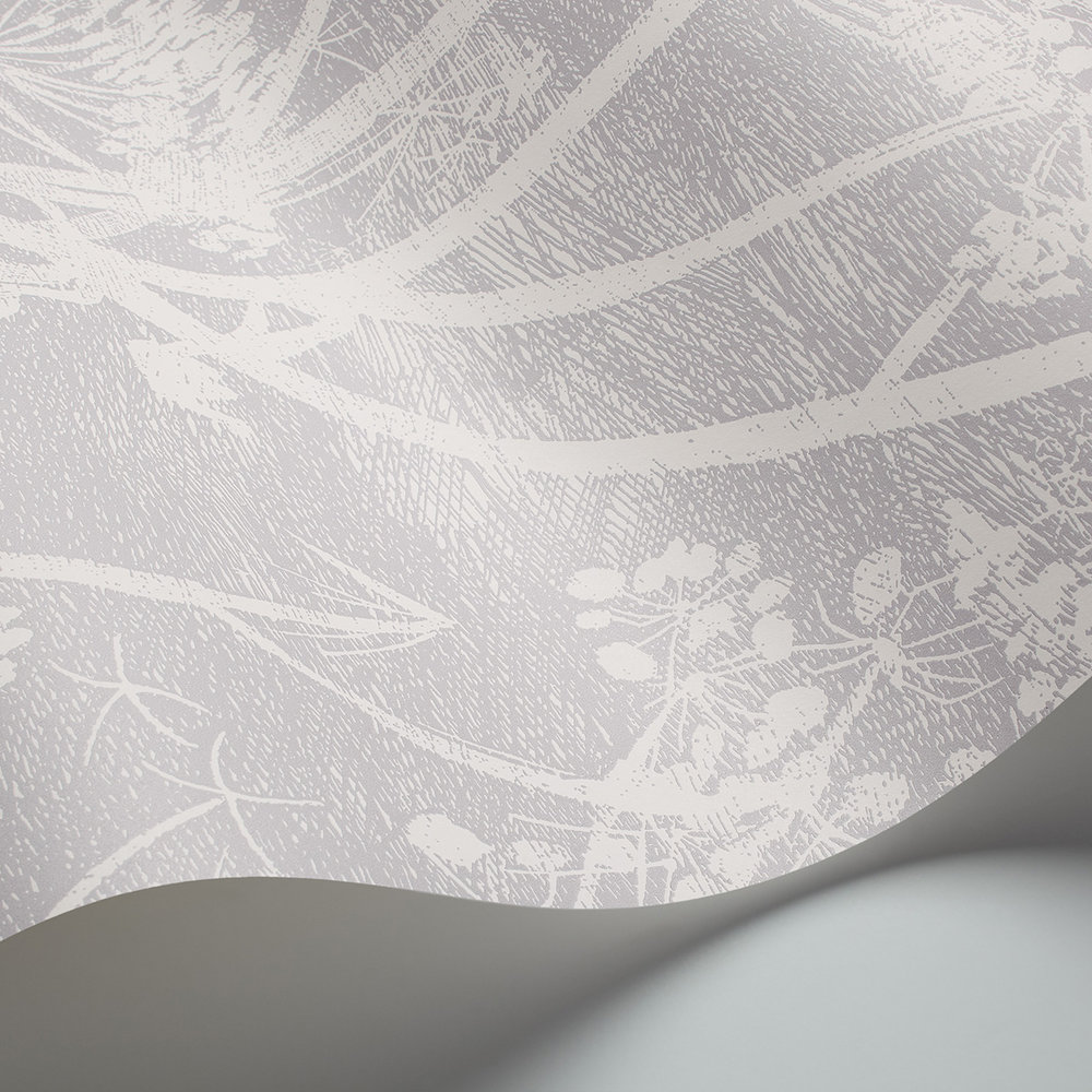 Cole & Son Cow Parsley Soft Lilac Wallpaper - Product code: 95/9049
