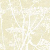 Cole & Son Cow Parsley Light Gold Wallpaper - Product code: 95/9053
