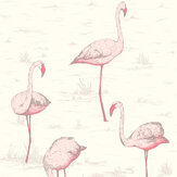 Cole & Son Flamingos White Wallpaper