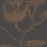 Cole & Son Lily Bronze & Black Wallpaper