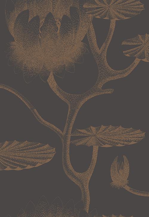 Cole & Son Lily Bronze & Black Wallpaper main image