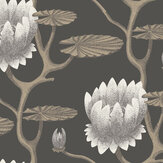 Cole & Son Summer Lily Black Wallpaper - Product code: 95/4026