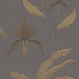 Cole & Son Orchid Bronze Wallpaper - Product code: 95/10056