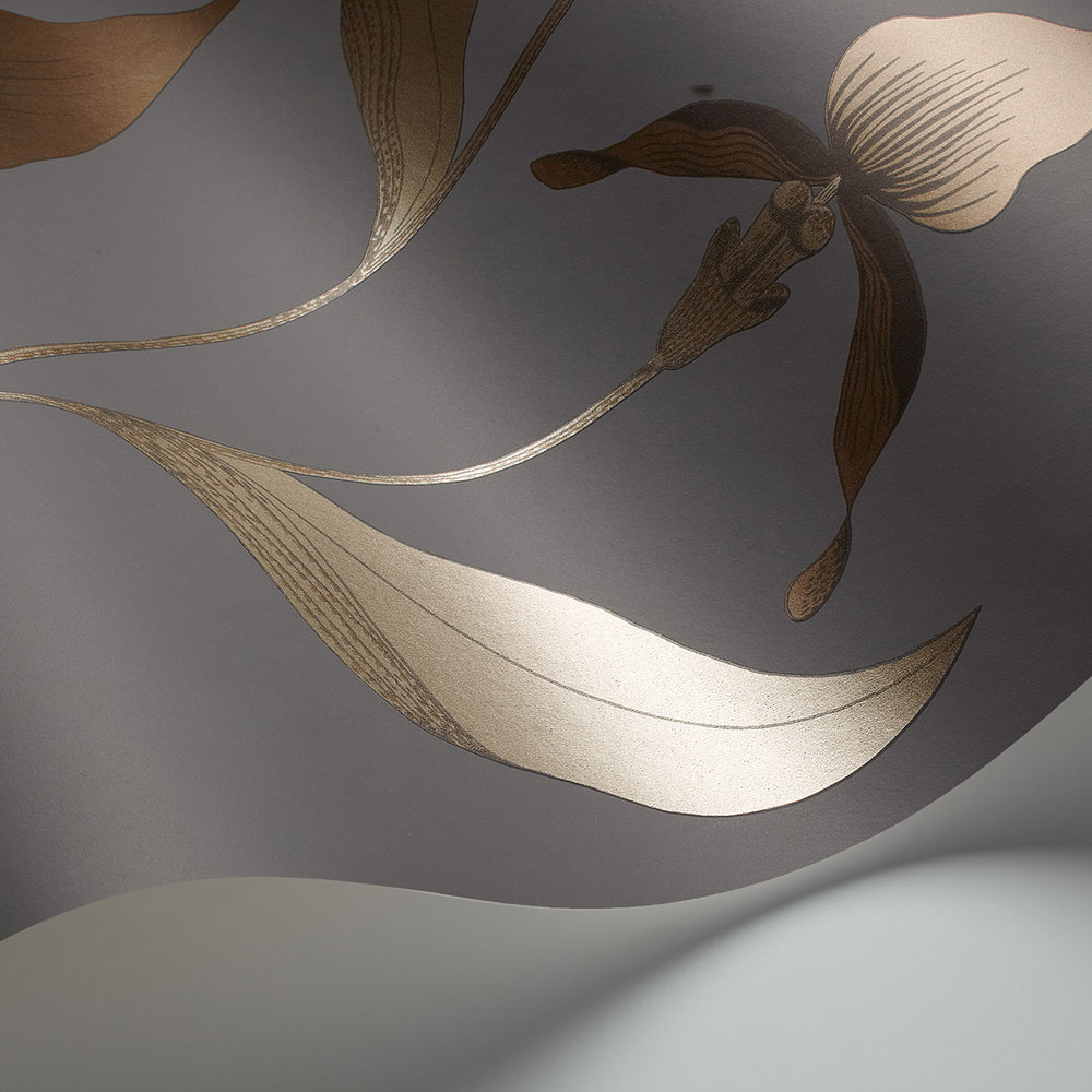 Orchid Wallpaper - Bronze - by Cole & Son