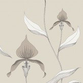 Cole & Son Orchid Grey Wallpaper