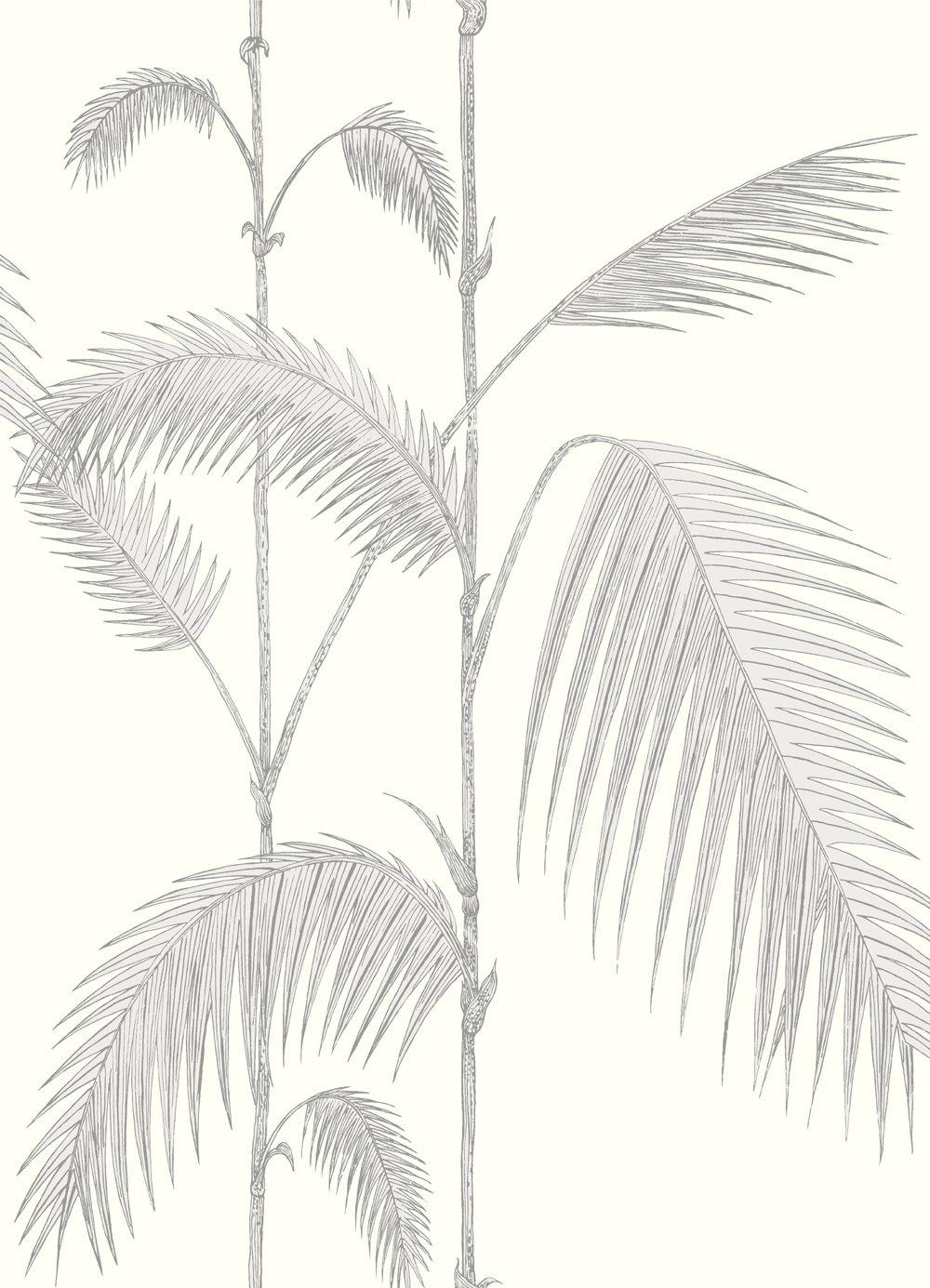 Cole & Son Palm Dove Grey Wallpaper main image