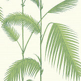 Cole & Son Palm Green & Ivory Wallpaper - Product code: 95/1009