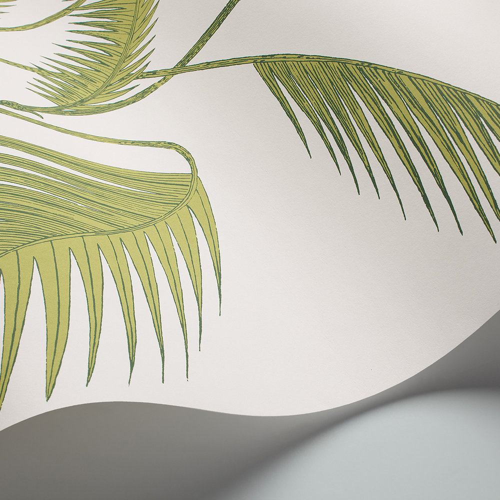 Palm Wallpaper - Green & Ivory - by Cole & Son