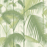 Cole & Son Palm Jungle Ivory Wallpaper - Product code: 95/1001