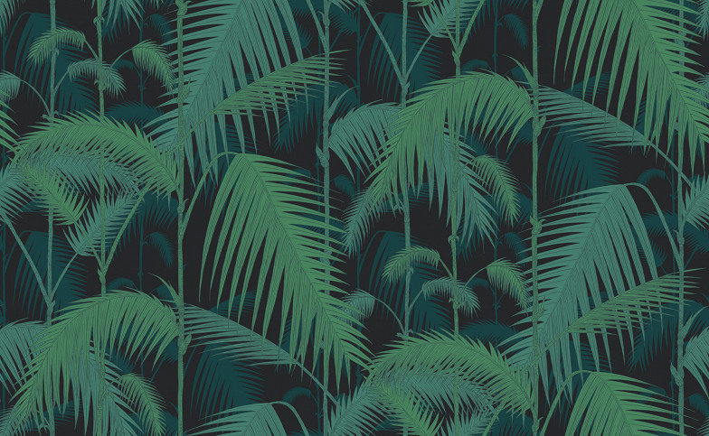 Palm Jungle By Cole Son