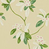 Sanderson Oleander Green / Cream Wallpaper - Product code: 212130