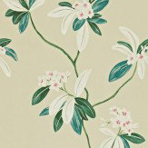 Sanderson Oleander Beige / Green Wallpaper