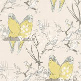 Belynda Sharples Budgie Yellow / Grey Wallpaper