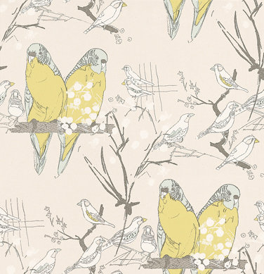 Belynda Sharples Budgie Yellow / Grey Wallpaper main image