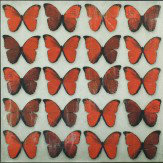 Arthouse Scarlet Butterflies Superfoil Canvas Art