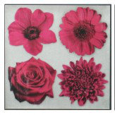 Arthouse Cerise Floral Feast set of 3 canvases Art