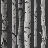 Albany Nordik Wood Silver Grey Wallpaper - Product code: 31052