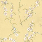 Anna French Japonica Yellow / Pink / White Wallpaper