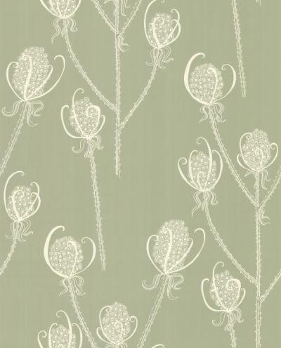 Hubbard and Reenie Teasels - Shepherd Cream / Soft Green Wallpaper - Product code: TSL3