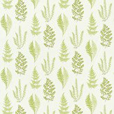 Sanderson Angel Ferns Olive Fabric - Product code: 221928
