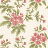 Little Greene Grosvenor Street Parlour Pink / Green Wallpaper