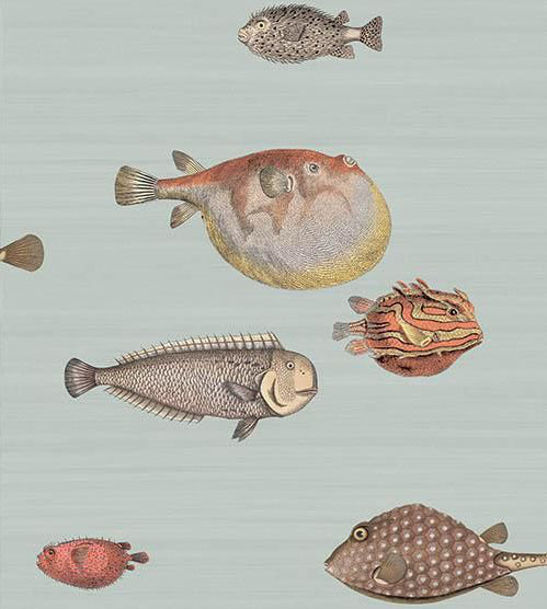 Cole & Son Acquario Soft Aqua Wallpaper - Product code: 97/10030