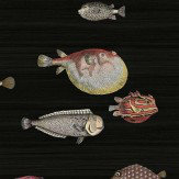 Cole & Son Acquario Red / Orange / Charcoal Wallpaper - Product code: 97/10048
