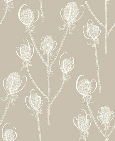 Image of Earth Inke Wallpapers Teasels - Cream Tea, TSL5