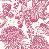 Lorca La Favourite Pink / White Wallpaper
