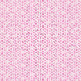 Harlequin Ditsy Daisy Cream / Fuchsia Wallpaper