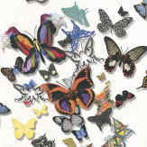 Christian Lacroix Butterfly Parade Multi / White Wallpaper