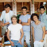 One Direction One Direction Mural Barn