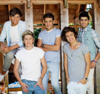 Image of One Direction Murals One Direction Mural Barn, 1D-BARN-001