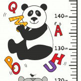 ABC Height Chart