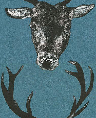 Graduate Collection Stag Head Teal Wallpaper main image