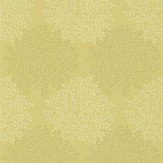 Sanderson Lindos Gold / Silver Wallpaper