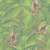 Matthew Williamson Sunbird Green Wallpaper