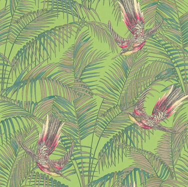 Matthew Williamson Sunbird Green Wallpaper - Product code: W6543-03