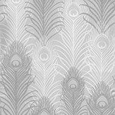Matthew Williamson Peacock Metallic Silver / Pebble / White Wallpaper - Product code: W6541-04