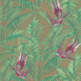 Matthew Williamson Sunbird Multi Wallpaper - Product code: W6543-06